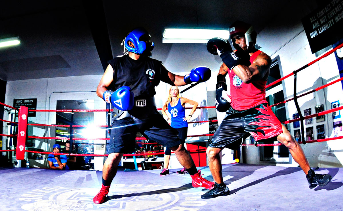 Image result for Boxing Sparring