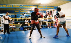 box sparring